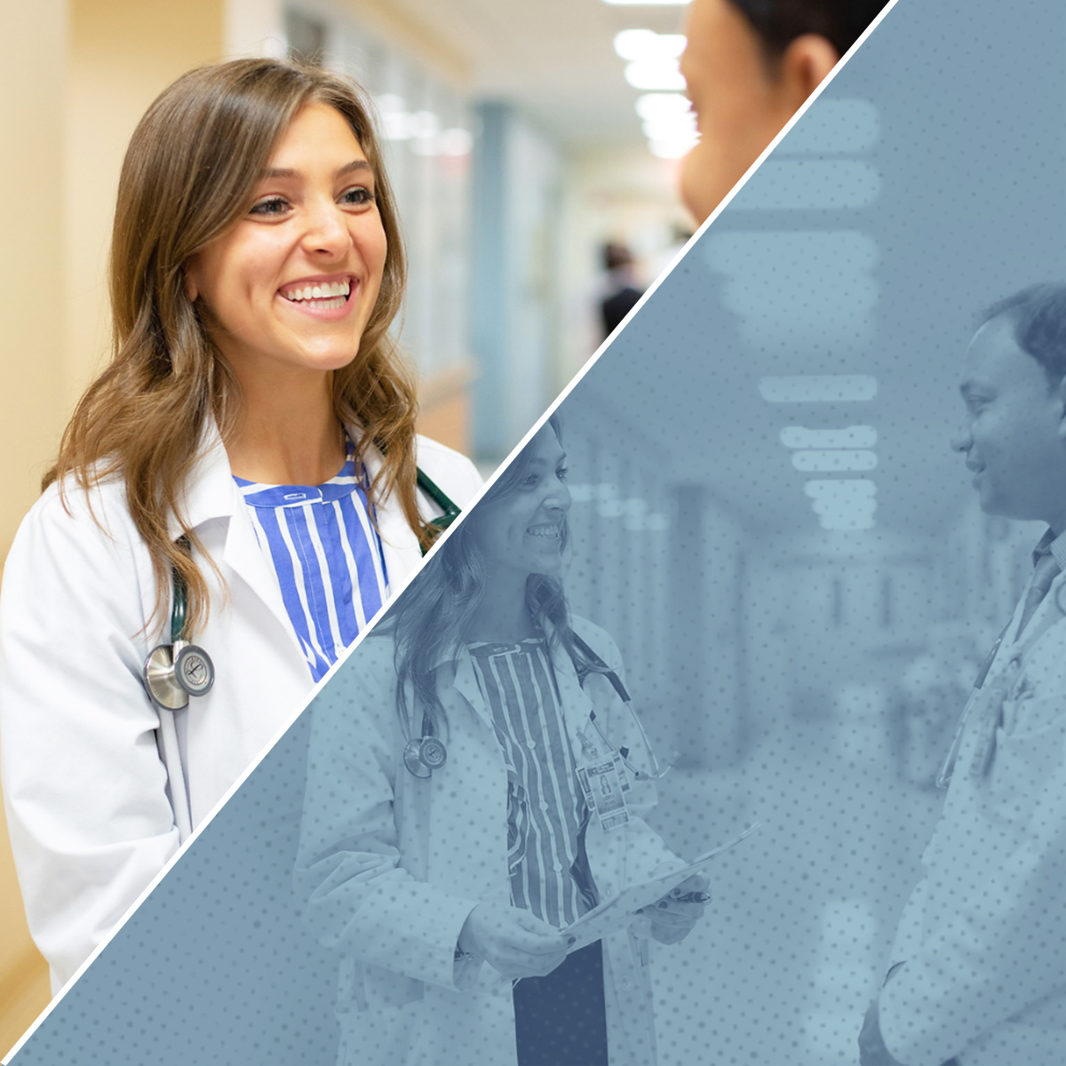 Nurse Practitioner vs. Doctor: Comparing These Health Care Provider Roles Square