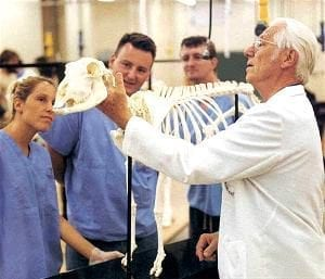 Veterinary Medicine Professor with Skeleton