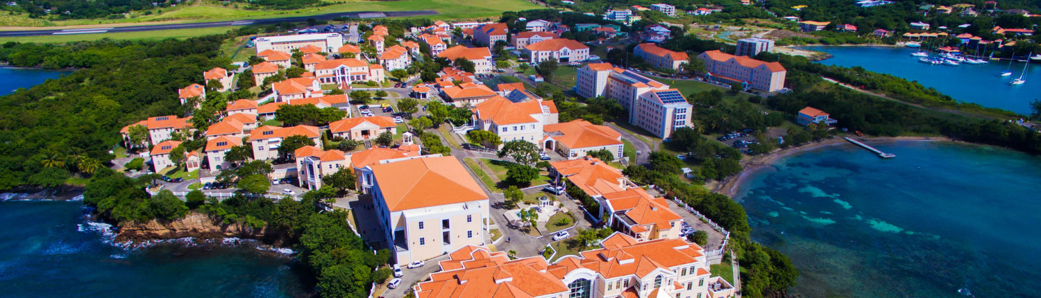 St George S University Caribbean Medical School And