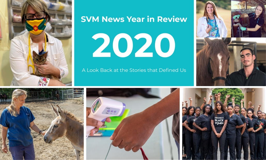 top vet stories of 2020