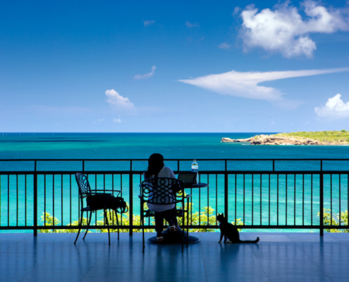Girl and her cat sitting at a table looking at the beautiful Caribbean sea in Grenada at SGU